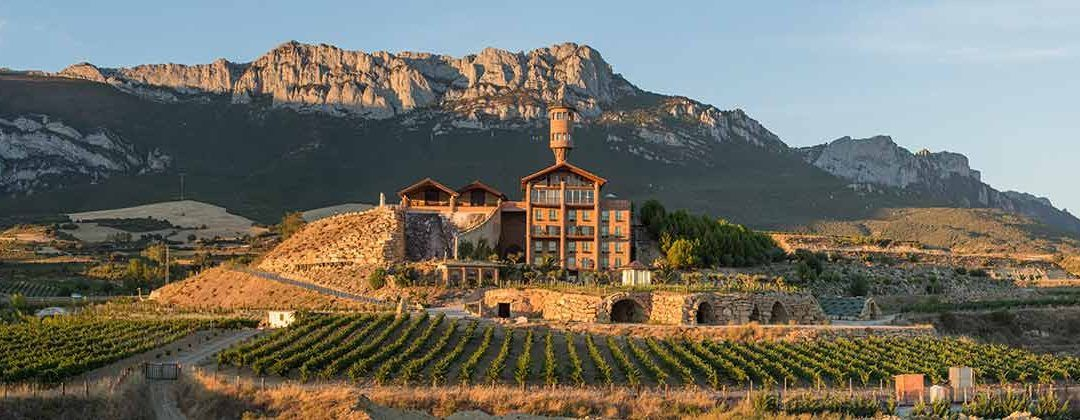 How to organise a visit to a good winery?