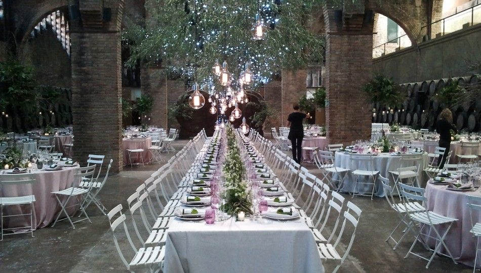 Organize a dinner in a winery